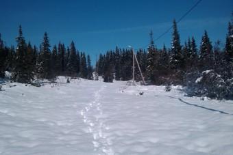 Masse snø i marka