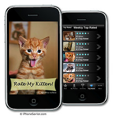 Rate My Kitten iPhone App by Photo Giddy (Flickr, CC-BY-NC)